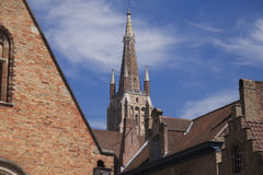 The Saint Salvador Cathedral in Bruges Royalty Free Stock Image