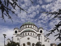 Saint-Sava Temple (Church) through evergreen tree branches, Belgrade, Serbia Stock Images