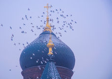 Saint Sophia Cathedral and Pigeons Royalty Free Stock Photography