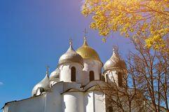 Saint Sophia Cathedral in Veliky Novgorod, Russia - closeup view. Veliky Novgorod, Russia - Saint Sophia Cathedral domes framed by blooming spring tree in Veliky stock photo