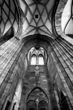 Saint Stephen's Cathedral, Vienna. Saint Stephen's Cathedral in Vienna Royalty Free Stock Images