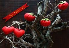 Saint Valentin heureux, fond étonnant Image libre de droits