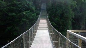 Sainte安妮在峡谷Sainte安妮(魁北克,加拿大)系列(3跌倒23) 免版税库存照片