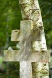Sainte-Geneviève-DES-Bois, DES Bois, Liers, cimitero russo di Sainte Genevieve in Francia fotografia stock
