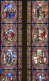 Sainte-Suzanne - Stained glass. Sainte-Suzanne (Mayenne, Pays de la Loire, France) - Stained glass in the ancient church Stock Image