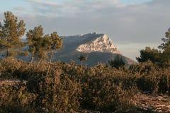 Sainte Victoire山的图片在冬天,围拢由一个典型的普罗旺斯森林 图库摄影