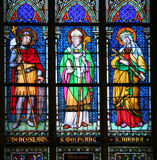 Saints on stained glass Royalty Free Stock Image