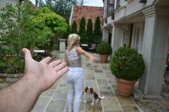Sair da mulher e do cão fotografia de stock royalty free