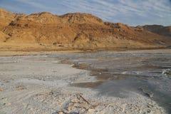 Sais do Mar Morto Foto de Stock Royalty Free
