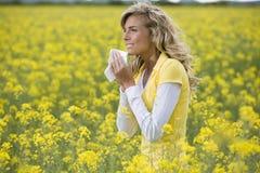 Saison d'allergie Images libres de droits