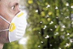 Saison d'allergie photos stock