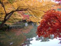 Saison d'automne Image stock