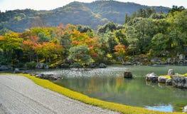 Saison d'automne de forêt d'érable au Japon Images libres de droits