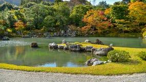Saison d'automne de forêt d'érable au Japon Image libre de droits
