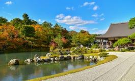 Saison d'automne de forêt d'érable au Japon Photos stock