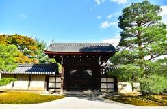 Saison d'automne de forêt d'érable au Japon Photographie stock
