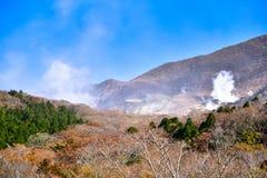 Saison d'automne de forêt d'érable au Japon avec le Mountain View de Fuji Photographie stock