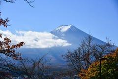 Saison d'automne de forêt d'érable au Japon avec le Mountain View de Fuji Images libres de droits