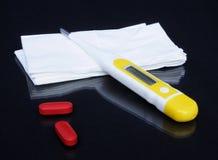 Saison de froid et de grippe Photographie stock libre de droits