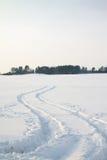 Saison de l'hiver Photos libres de droits