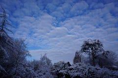 Saison de l'hiver Images libres de droits