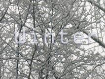 Saison de l'hiver photos stock