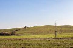 Saison de paysage de ferme au printemps Photos libres de droits