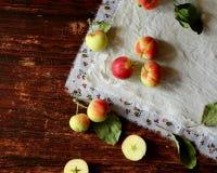 Saison de pommes Image libre de droits