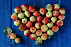Saison de pommes Photos libres de droits