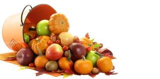 Saison fructueuse Photo stock
