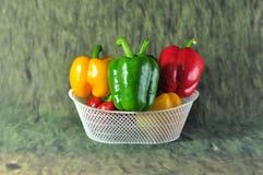 Saison- Gemüse-Thailand lizenzfreies stockbild