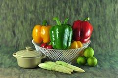 Saison- Gemüse-Thailand lizenzfreies stockfoto