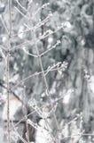 Saison heureuse d'hiver Image stock