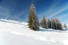 Saison magnifique de l'hiver Images libres de droits