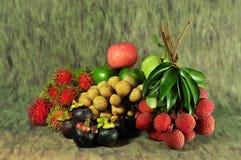 Saisonfrucht Thailand stockbild