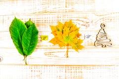Saisons : Été, automne, hiver Feuilles sur un fond en bois blanc Image libre de droits