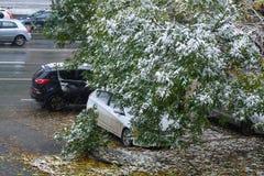 Saisons dans la ville Été, automne, hiver Image stock