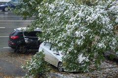 Saisons dans la ville Été, automne, hiver Photographie stock libre de droits