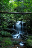 Saithip Waterfall At Phu Soi Dao National Park Stock Image