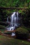 Saitip siklawa przy Phu Soja Dao parkiem narodowym Obrazy Royalty Free