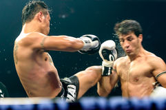 Saiyok Pumpanmung of Thailand and Seyedisa Alamdarnrzam of Iran in Thai Fight 2013. Stock Photography