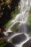 Saja-Besaya natural park Stock Images