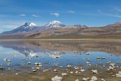 Sajama nationalpark Fotografering för Bildbyråer