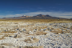 Sajama. Picturesque view of bolivian Sajama national park and some of its highest peaks Royalty Free Stock Image