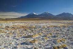 Sajama. Picturesque view of bolivian volcanoes Pomerape and Paranicota, highest peaks in Sajama national park in Bolivia Royalty Free Stock Image