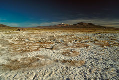 Sajama. Scenic view of bolivian Sajama national park and some of its highest peaks Stock Photo
