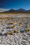 Sajama. Scenic view of bolivian volcanoes Pomerape and Paranicota, highest peaks in Sajama national park in Bolivia Stock Photo