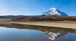 Sajama volcano and lake Huayñacota. Andean Bolivia Stock Image