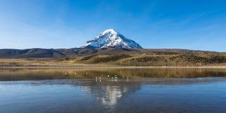 Sajama volcano and lake Huaynacota. Andean Bolivia Royalty Free Stock Photos