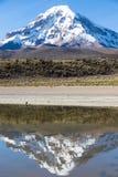 Sajama volcano and lake Huaynacota. Andean Bolivia Royalty Free Stock Image